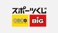 日本スポーツ振興センター スポーツ振興くじ助成事業実績